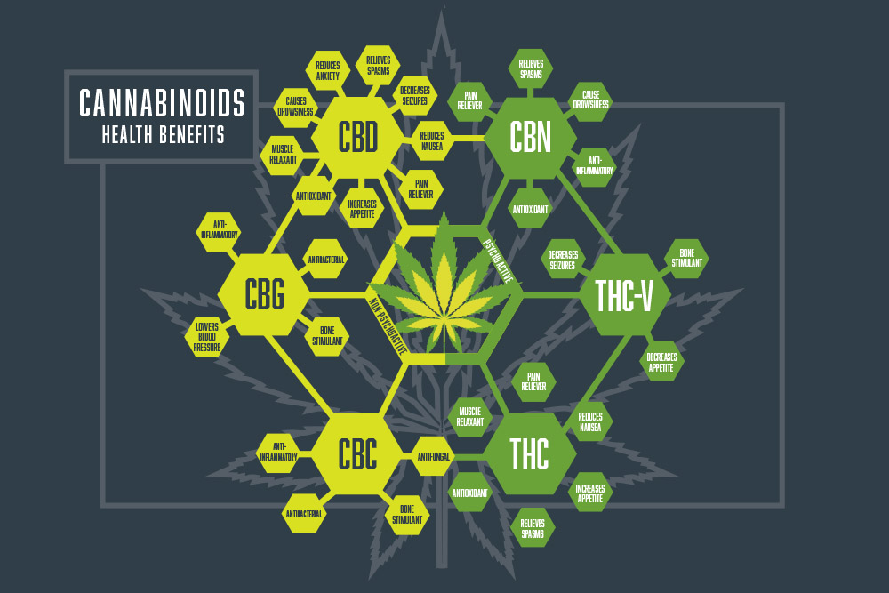 The Prospects for Private Equity Cannabinoid Investments