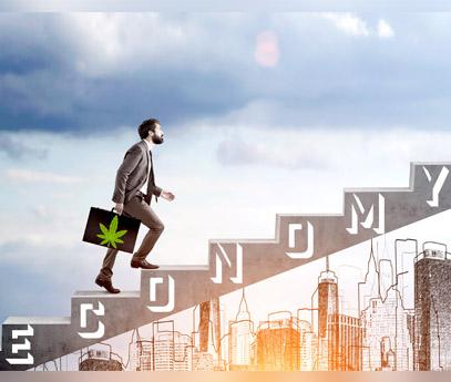 How Cannabis Benefits the Economy 2021