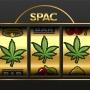 SPACs in Cannabis 2021