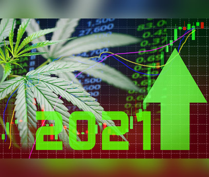 Cannabis Investment Trends 2021