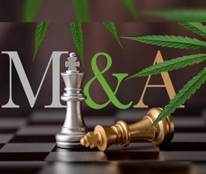 Avoiding Pitfalls in Cannabis M&A Deals