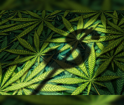 Raising Capital in the Cannabis Industry 2021